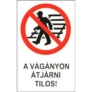 Kép 1/4 - A vágányon átjárni tilos! -